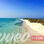 شواطئ السعودية