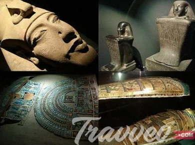 أفضل الانشطة في متحف الاسكندرية