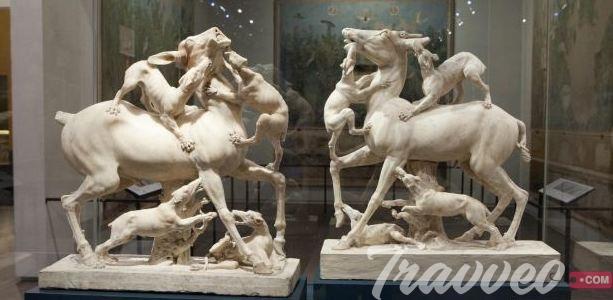متحف الاسكندرية