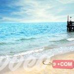 شواطئ السعودية التي ننصح بزيارتها