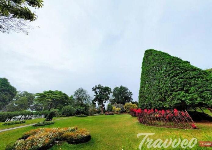 أبرز الأنشطة فى الحديقة النباتية الملكية