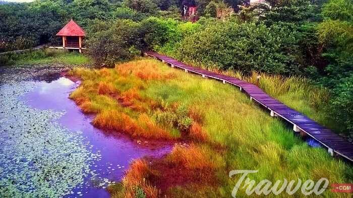 المنتزهات السياحية في سريلانكا