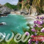 شاطئ الزهور