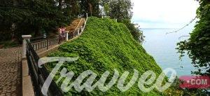 أبرز الانشطة في الحديقة النباتية في باتومي