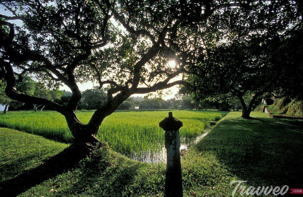 حديقة لونوجانجا الطبيعية