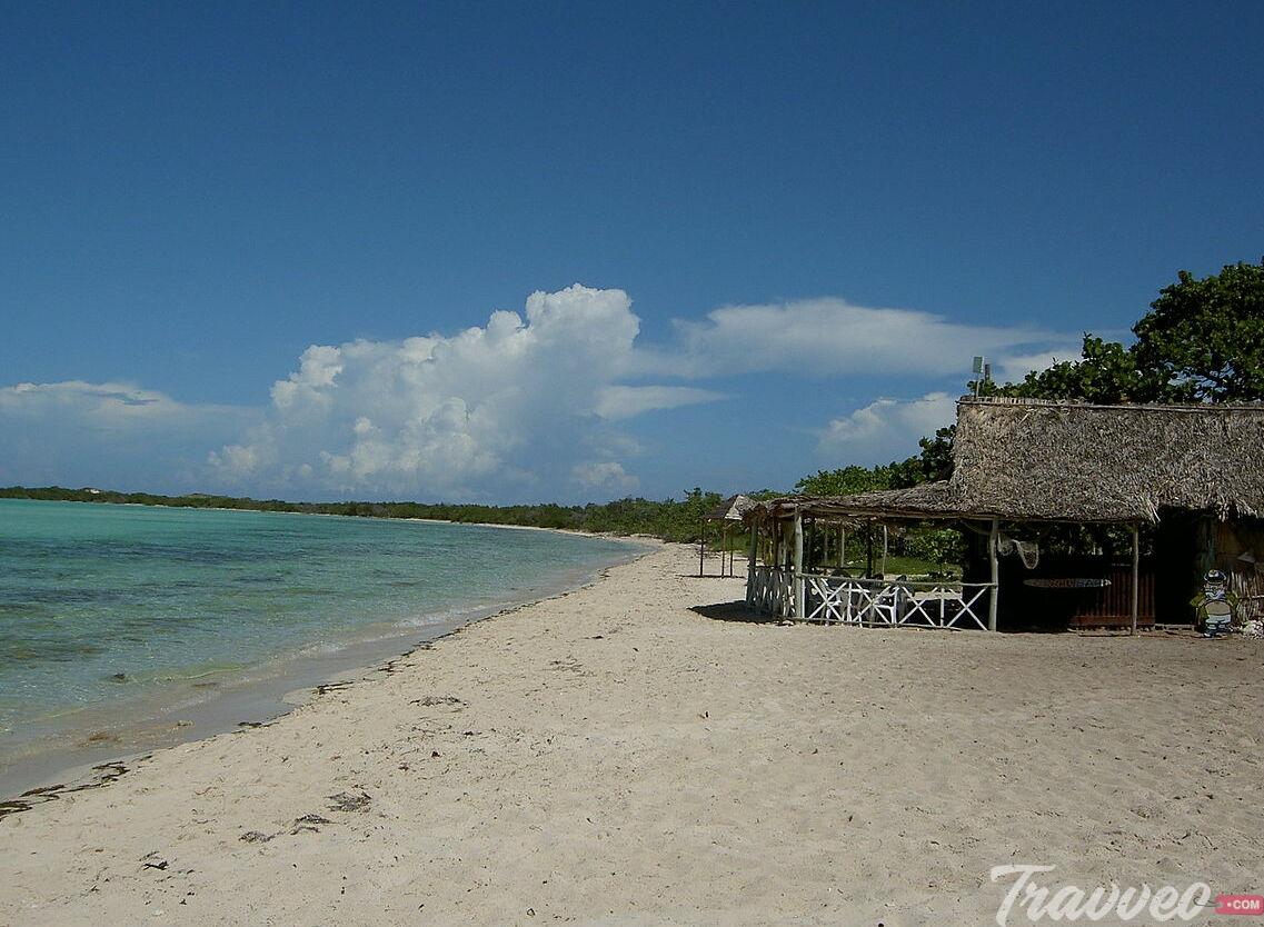شاطئ كوكوي