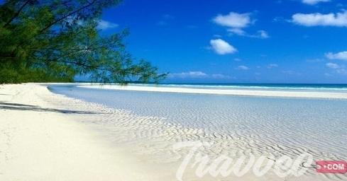 جزيرة بيمبا