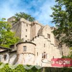 قلعة يرغ هاهونبادن