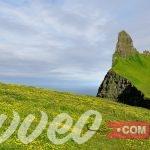 تكلفة السياحة في ايسلندا