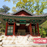 قصر تشانغدوك