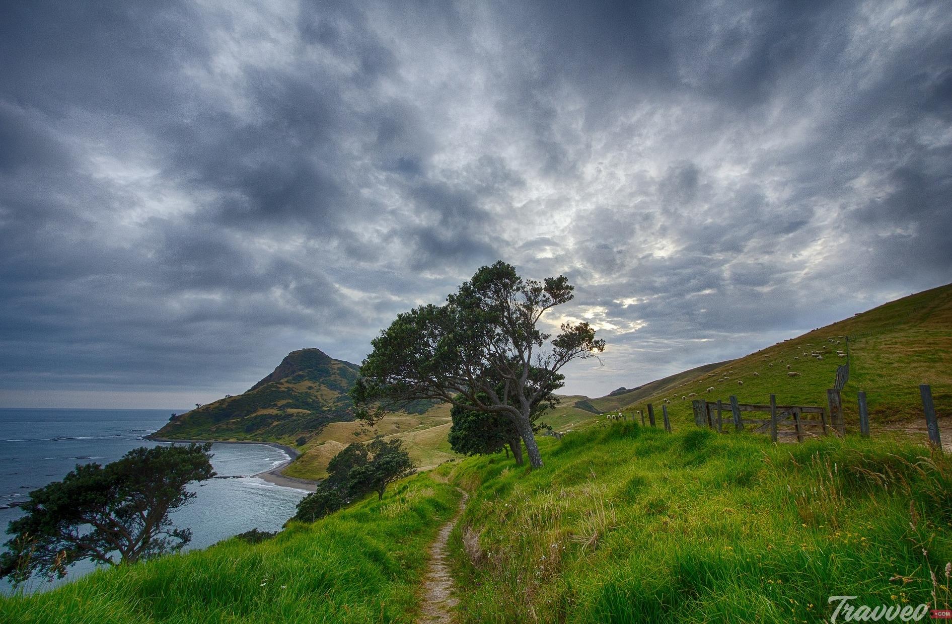 رحلة سياحية الى نيوزيلندا