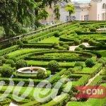حدائق الفاتيكان