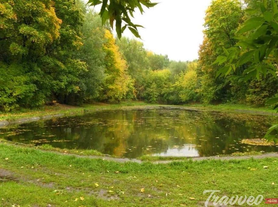 حديقة نيسكوشني