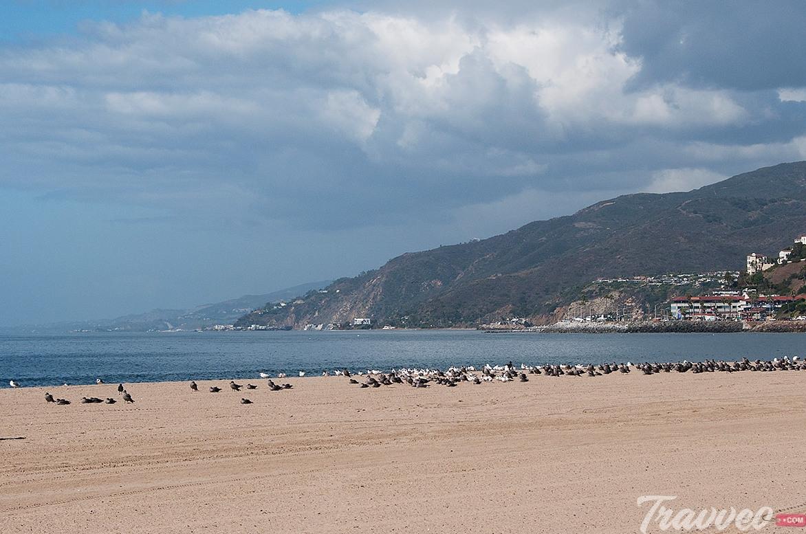 شاطئ ويل روجرز