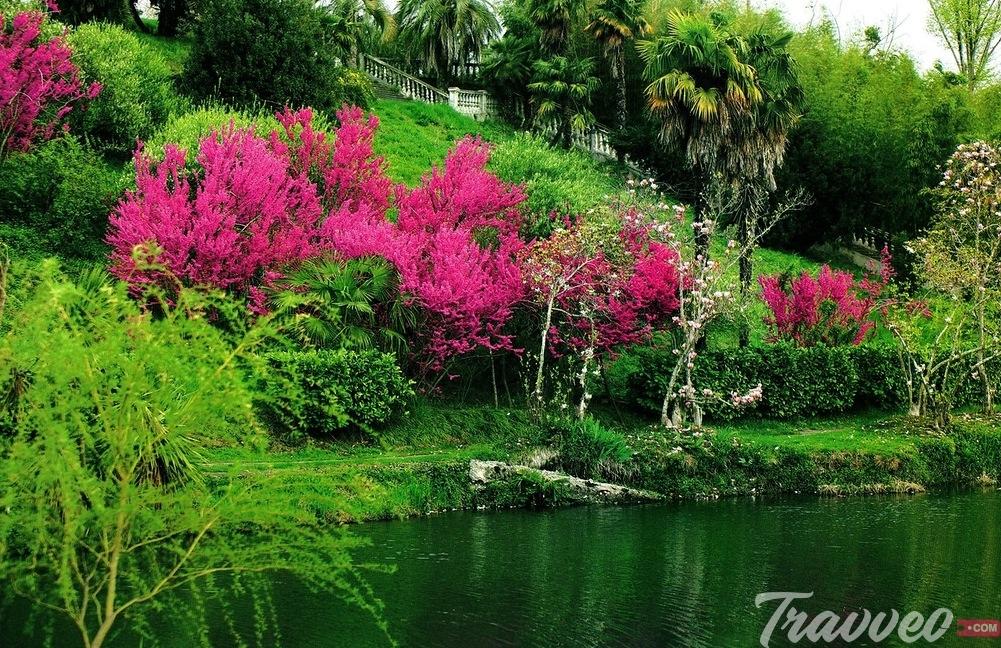 حديقة نباتات سوتشي
