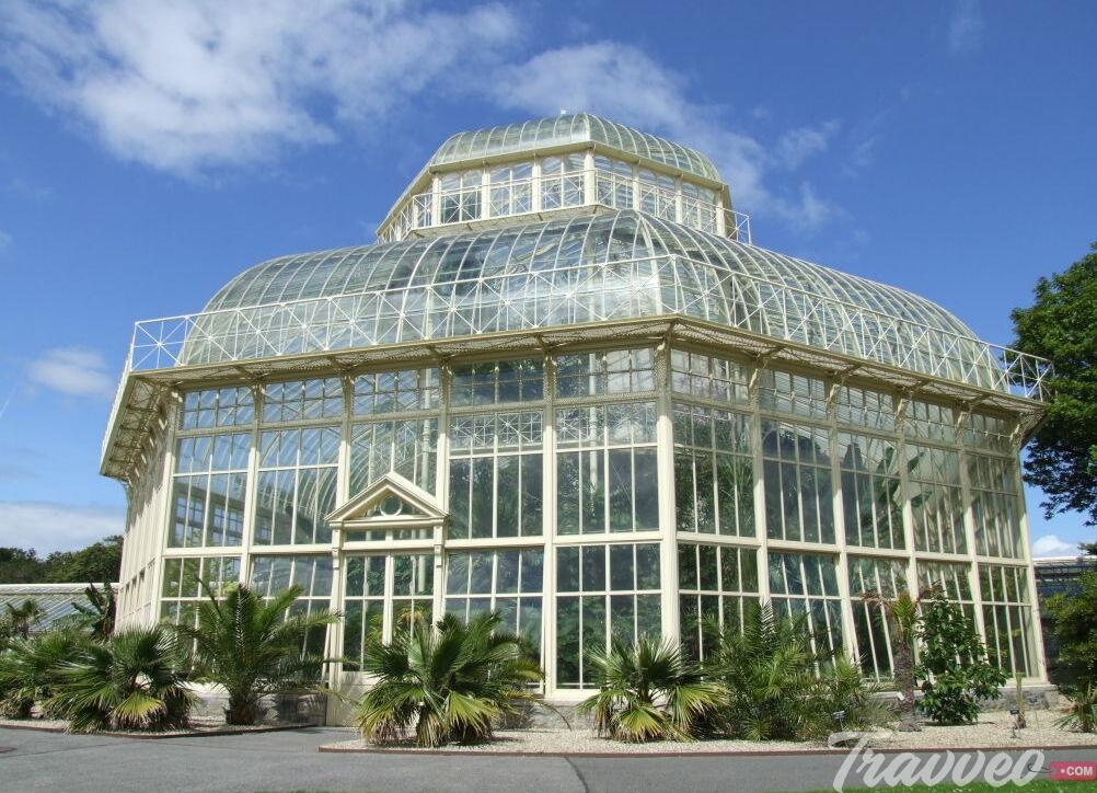 حديقة النباتات الوطنية