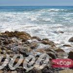 شاطئ ماليبو
