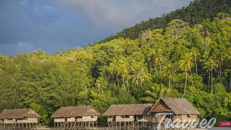 رحلة سياحية الى بابوا نيو غينيا