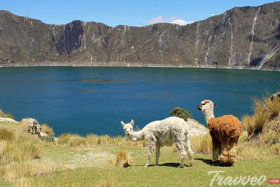 افضل الاماكن السياحية فى الاكوادور