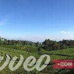 جولة سياحية مميزة في باندونق اندونيسيا