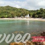 شاطئ لو سو تشينغ