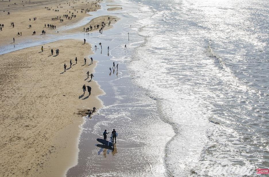 شواطئ هولندا