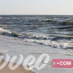 شاطئ Schiermonnikoog