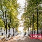 دليلك السياحي لمدينة لاهاي هولندا