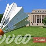متحف نيلسون اتكينز للفنون