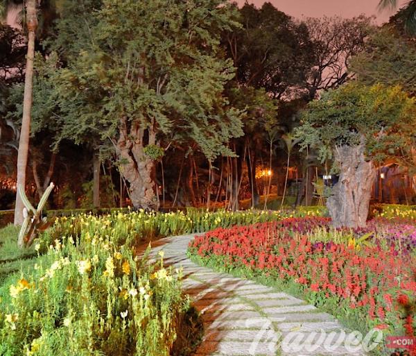 حديقة تشونغشان