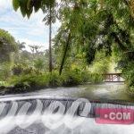 منتجع Tabacón Thermal Resort & Spa