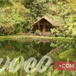 اقتراح برنامج سياحي للسياحة الطبيعية