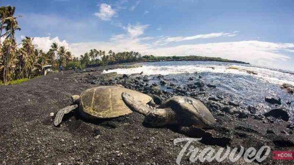 افضل شواطئ هاواي الموصي بها