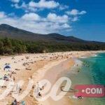 شاطئ وايليا بماوي